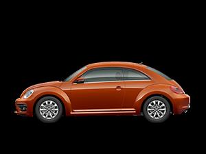 novy-beetle
